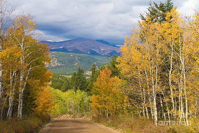 Photograph - Colorado Rocky Mountain Autumn Scenic Drive by James BO  Insogna