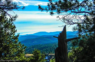 Art Print featuring the photograph Colorado View by Shannon Harrington