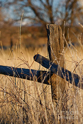 Autumn Photograph - Colorado Wooden Fence Post With Barbed Wire Scenics by ELITE IMAGE photography By Chad McDermott