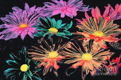 Photograph - Colored Daisies Digital Art by Merton Allen
