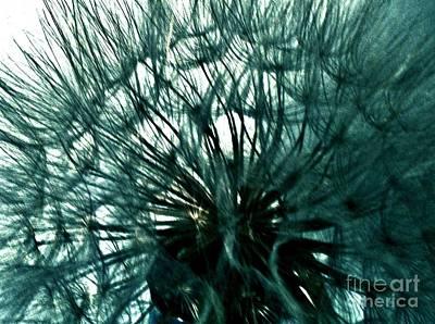 Wrap Digital Art - Colored Pod Flower Abstract by Marsha Heiken