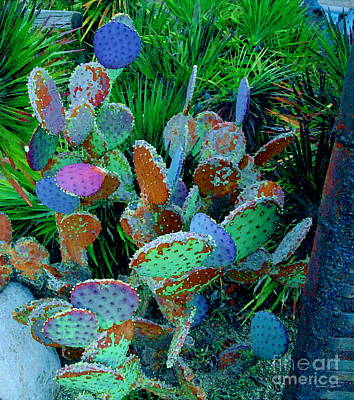 Photograph - Colorful Cacti Of Sedona by Christine S Zipps