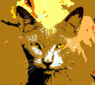 Colorful Cat Art Print by David Lee Thompson