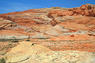 Photograph - Colorful Desert Valley Of Fire by Pierre Leclerc Photography