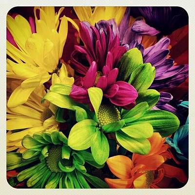 Colorful Photograph - #colorful #flowers by Mandy Shupp