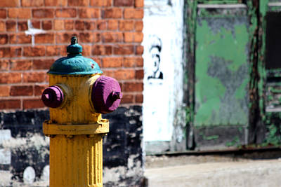 Photograph - Colorful Hydrant by Mark J Seefeldt