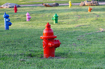 Photograph - Colorful Hydrants by Amelia Painter