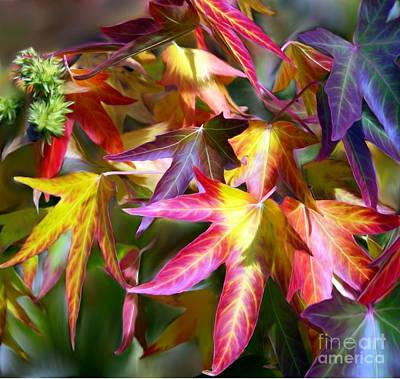 Digital Art - Colorful Leaves by Erica Hanel
