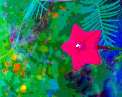 Impressionist Style Photograph - Colorful Red Flower by Padre Art