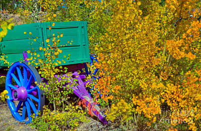 Photograph - Colorful Wagon by Harry Strharsky