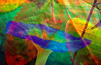 Colors Of Autumn Art Print by Shirley Sirois