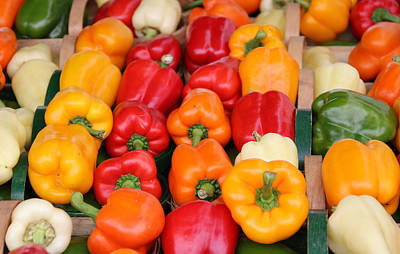 Colourful Peppers Art Print by Kim French