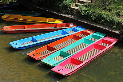 Photograph - Colourful Punts by Tony Murtagh