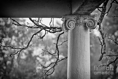 Virginia Photograph - Column In Spring by Susan Isakson