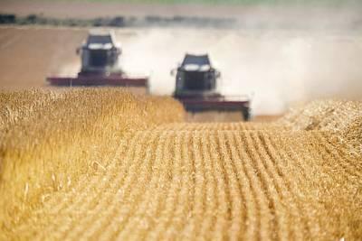 Combines Harvesting Field, North Art Print by John Short