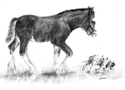 Clydesdale Drawing - Come Along by Meagan  Visser