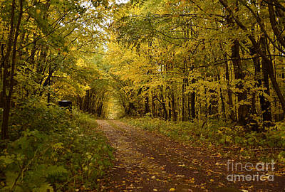 Lake Superior Art Gallery Photograph - Come Walk With Me by Whispering Feather Gallery