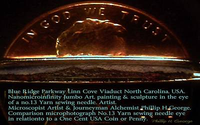 Nanomicroinfinity Art Painting - Comparison Microphotograph  by Phillip H George