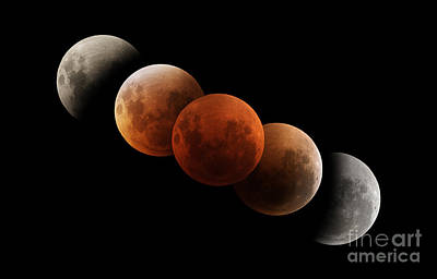 Changing Form Photograph - Composite Image Of Lunar Eclipse by Philip Hart