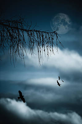 Composition With Tree, Moon, Clouds And Birds Art Print by Andreas Schott (Bonnix)