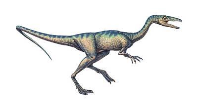 Compsognathus Dinosaur, Computer Artwork Art Print by Joe Tucciarone