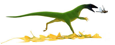 Drawing - Compsognathus by Jane Burton and Warren Photographic and Photo Researchers