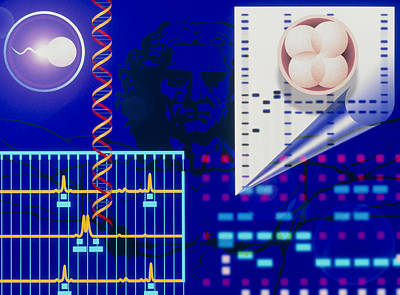 Computer Artwork Depicting Embryo Paternity Test Art Print
