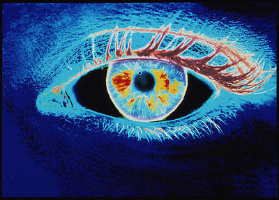 Computer Graphic Of A Human Eye (negative-image) Art Print