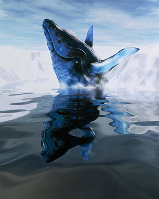 Computer Illustration Of A Humpback Whale Art Print by Victor Habbick Visions