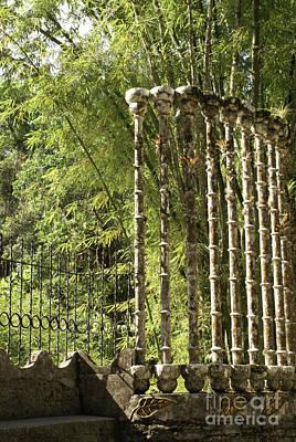 Photograph - Concrete Bamboo Las Pozas Mexico by John  Mitchell