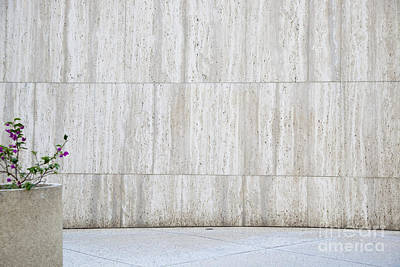 Concrete Planter With Flowers In Front Of Marble Wall Art Print by Inti St. Clair