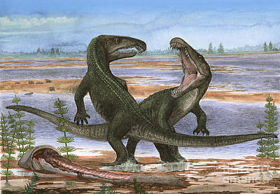 Confrontation Between Two Prehistoric Art Print by Sergey Krasovskiy