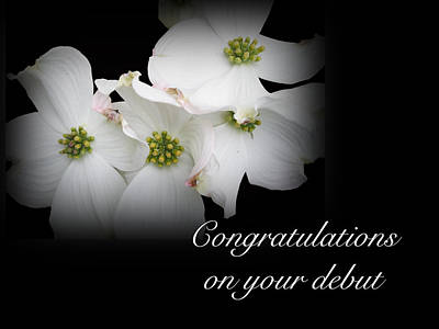 Congratulations On Your Debut - White Dogwood Blossoms Art Print by Mother Nature
