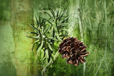Fir Trees Mixed Media - Conifer Cone by Michael Greenaway