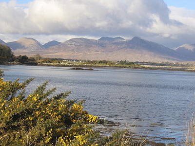 Photograph - Connemara by Rob Hemphill