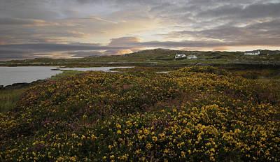 Photograph - Connemara Sunrise by John Farley