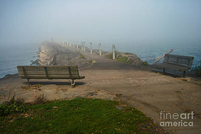 Webster Park Photograph - Contemplation by Ken Marsh