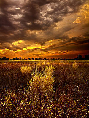 Autumn Leaf Photograph - Continuance by Phil Koch