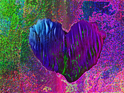 Art Print featuring the photograph Contours Of The Heart by David Pantuso