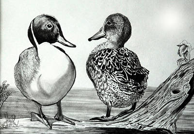 Drawing - Conversation Between Feathered Friends by Cheryl Poland