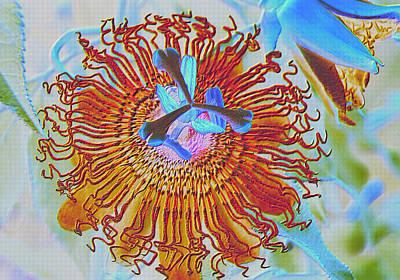 Copper Passionflower Art Print by Rosalie Scanlon