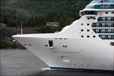 Photograph - Coral Princess 2 by Gary Rose
