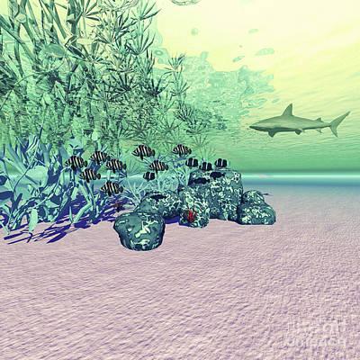 Aquatic Digital Art - Coral Reef Life In The Deep Ocean by Corey Ford