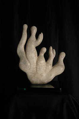 Sculpture - Corallo - Coral by Francesca Bianconi