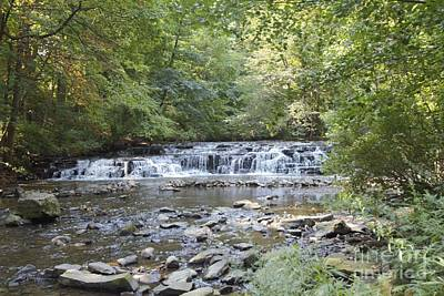 Art Print featuring the photograph Corbetts Glen Waterfall by William Norton