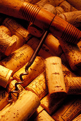 Uncork Photograph - Corkscrew And Wine Corks by Garry Gay