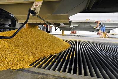 Grate Photograph - Corn At An Ethanol Processing Plant by David Nunuk