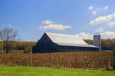 Lady Bug - Corn Barn and Silo by Douglas Barnett