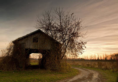 Corn Crib Photograph - Corn Crib by Cale Best