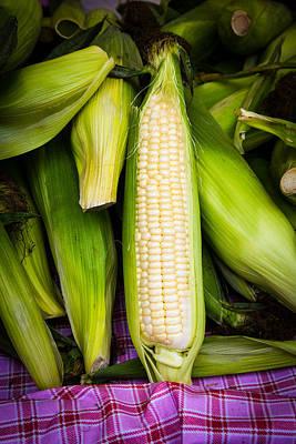 Photograph - Corn On The Cob by Dina Calvarese